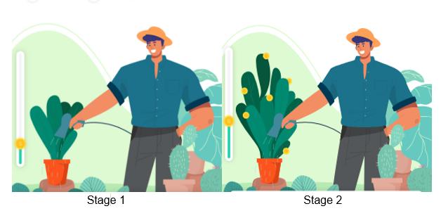 Watch your money plant grow